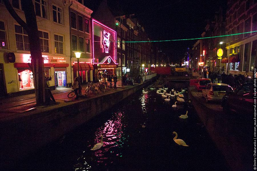 Может 6. Амстердам очень безопасный город, и это чувствуешь нутром, тут