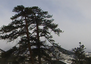Web camera United States of America, Colorado, Estes Park, Panorama