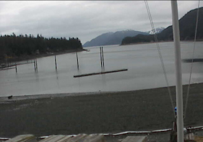 Web camera United States of America, Alaska, Tee Harbor, Panorama