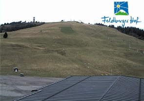 Web camera Germany, Feldberg, Panorama