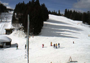 Web camera Germany, Baden-Württemberg, Hinterzarten, Ski Resort